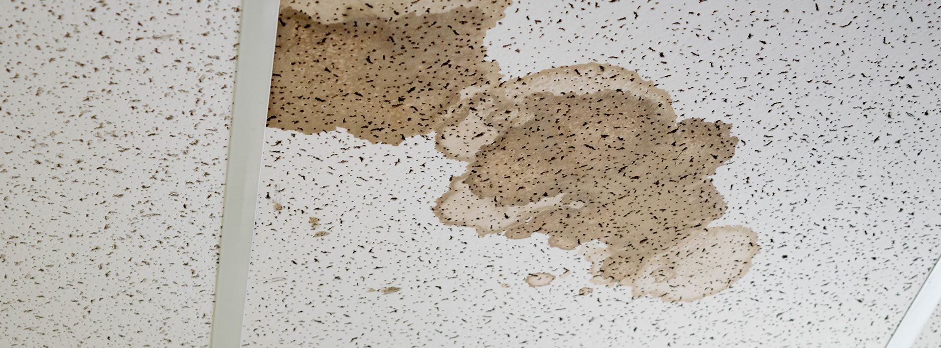 Stained ceilings - What you need to know